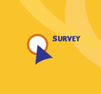 Begin survey here